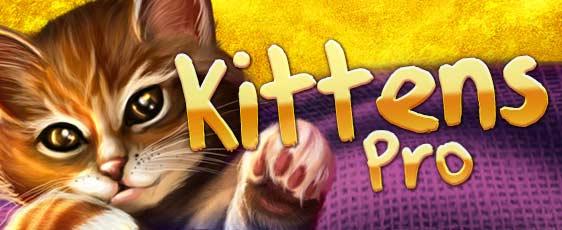Kittens Pro